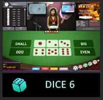 icon-D6