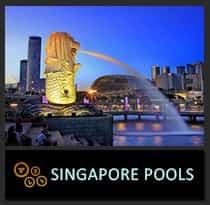 icon-SINGAPORE